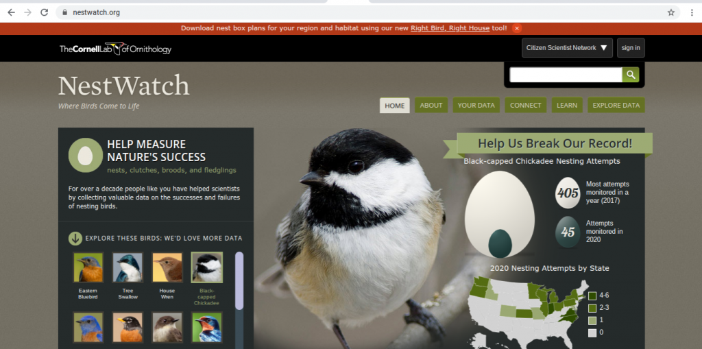 The home page of the NestWatch website